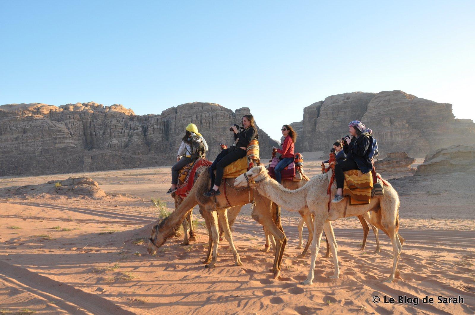 jordanie desert dromadaire wadi rum