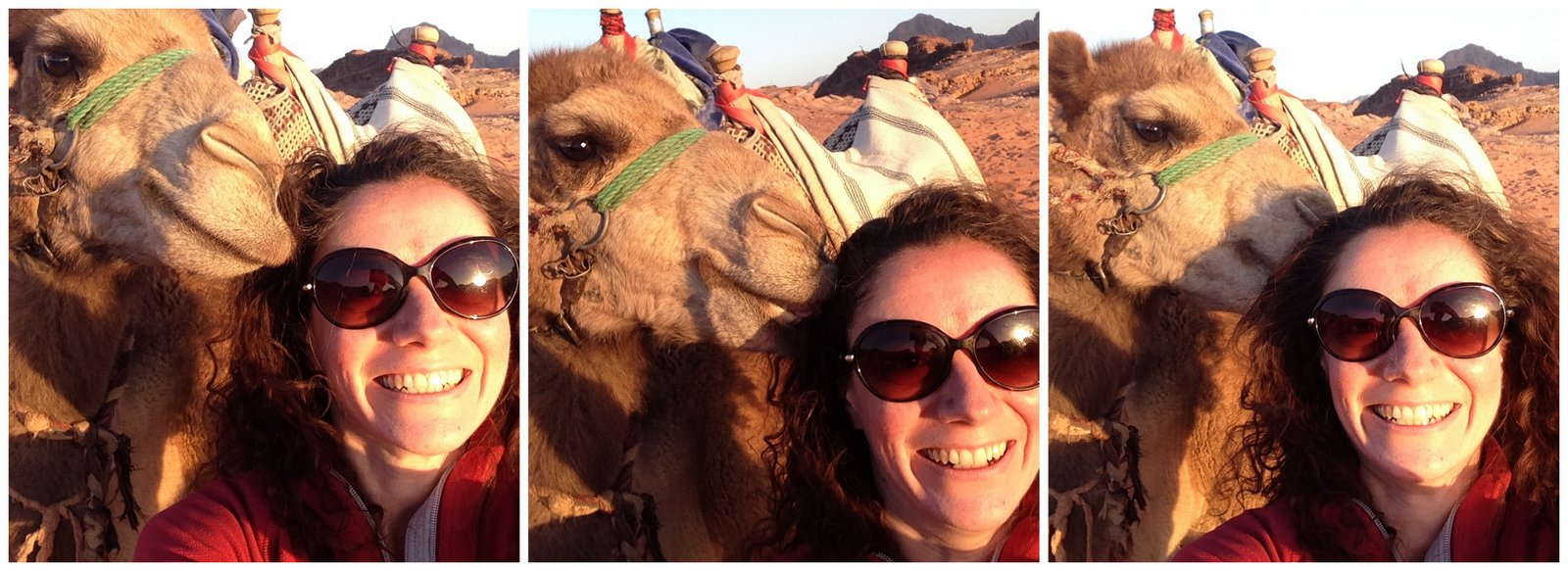 jordanie selfie insolite dromadaire