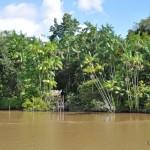 Mondial Inside Episode 3: descente de l'Amazone en bateau