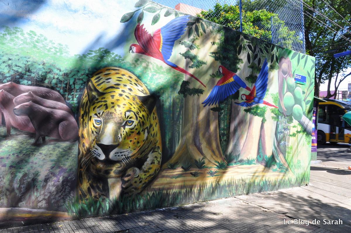 Street-art sur les murs de Manaus, av Getulio Vargas