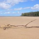 Voyage au Brésil: 6 coups de coeur de l'Amazonie au Nordeste