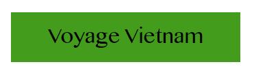 boite-voyage-vietnam
