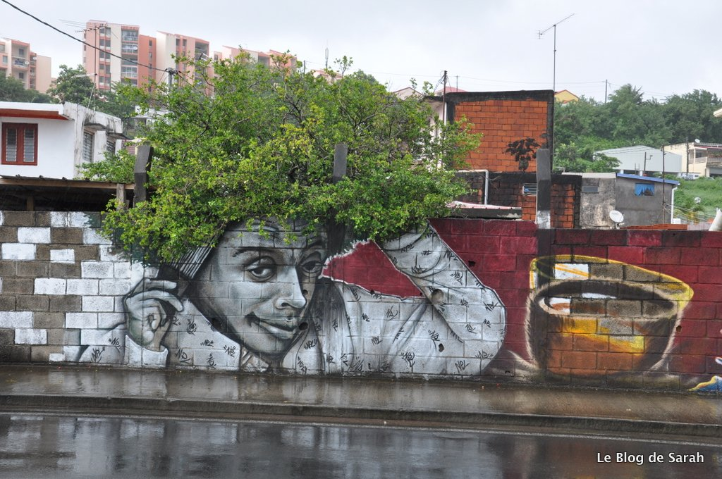 Spike Lee, une oeuvre de l'artiste Xän, sur la route du port à Fort-de-France