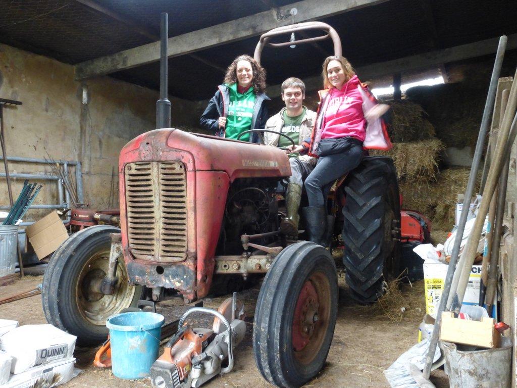 irlande-ferme