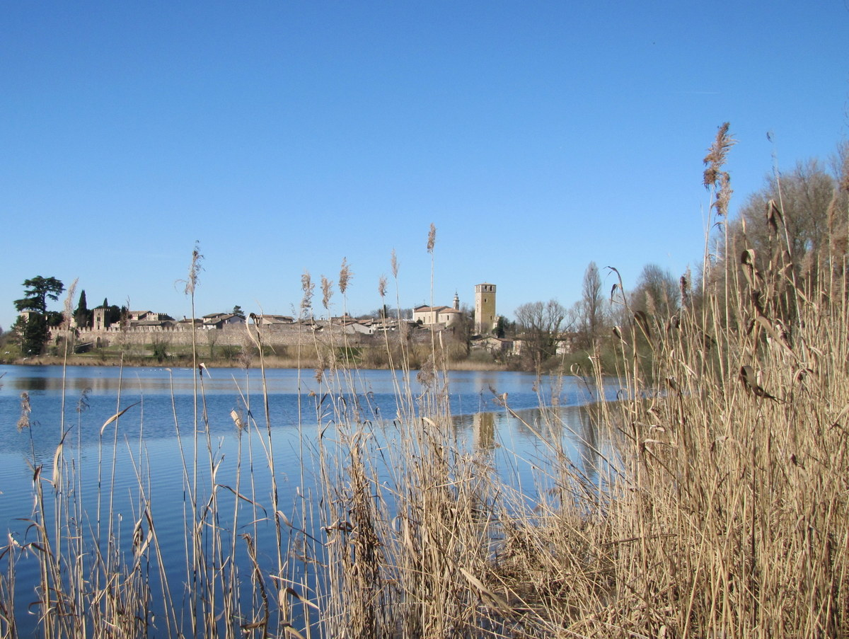 Vue sur le village de Castellaro Lagusello