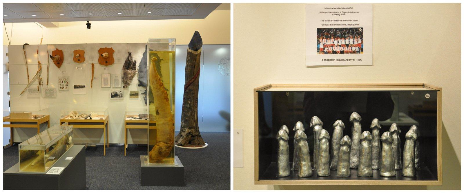 reykjavik-musee-penis
