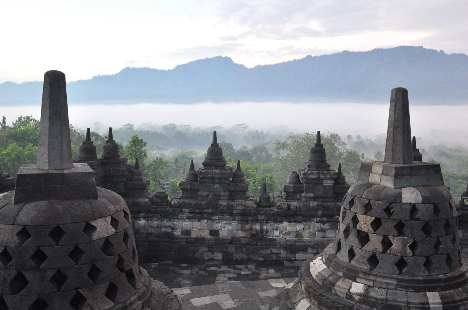 Le temple de Borobudur aux premières lueurs du jour avec la jungle qui émerge de la brume