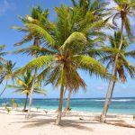 Une île, un lagon, un musée: 3 idées pour un voyage en Guadeloupe
