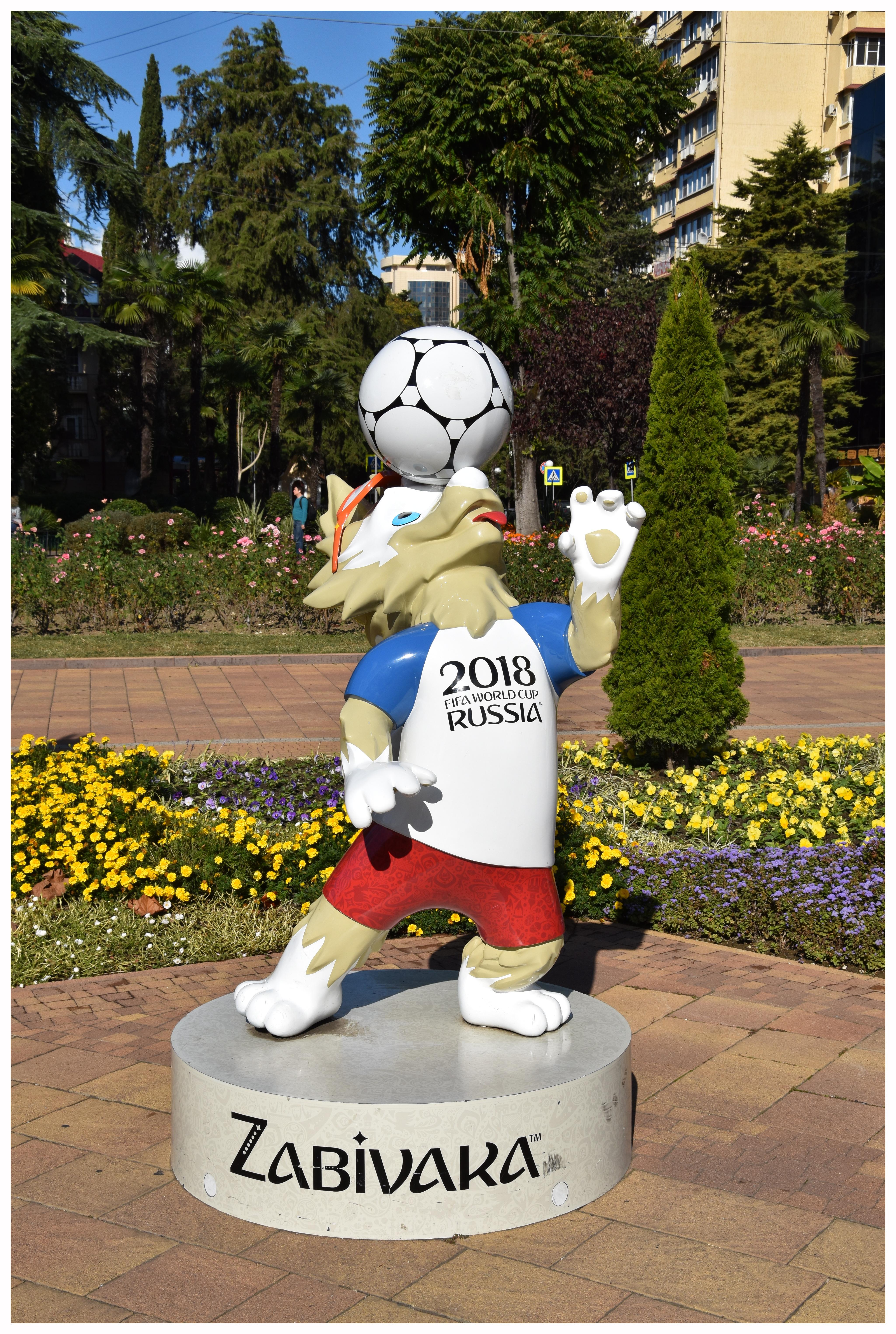 Voyager en Russie pour la Coupe du Monde de football