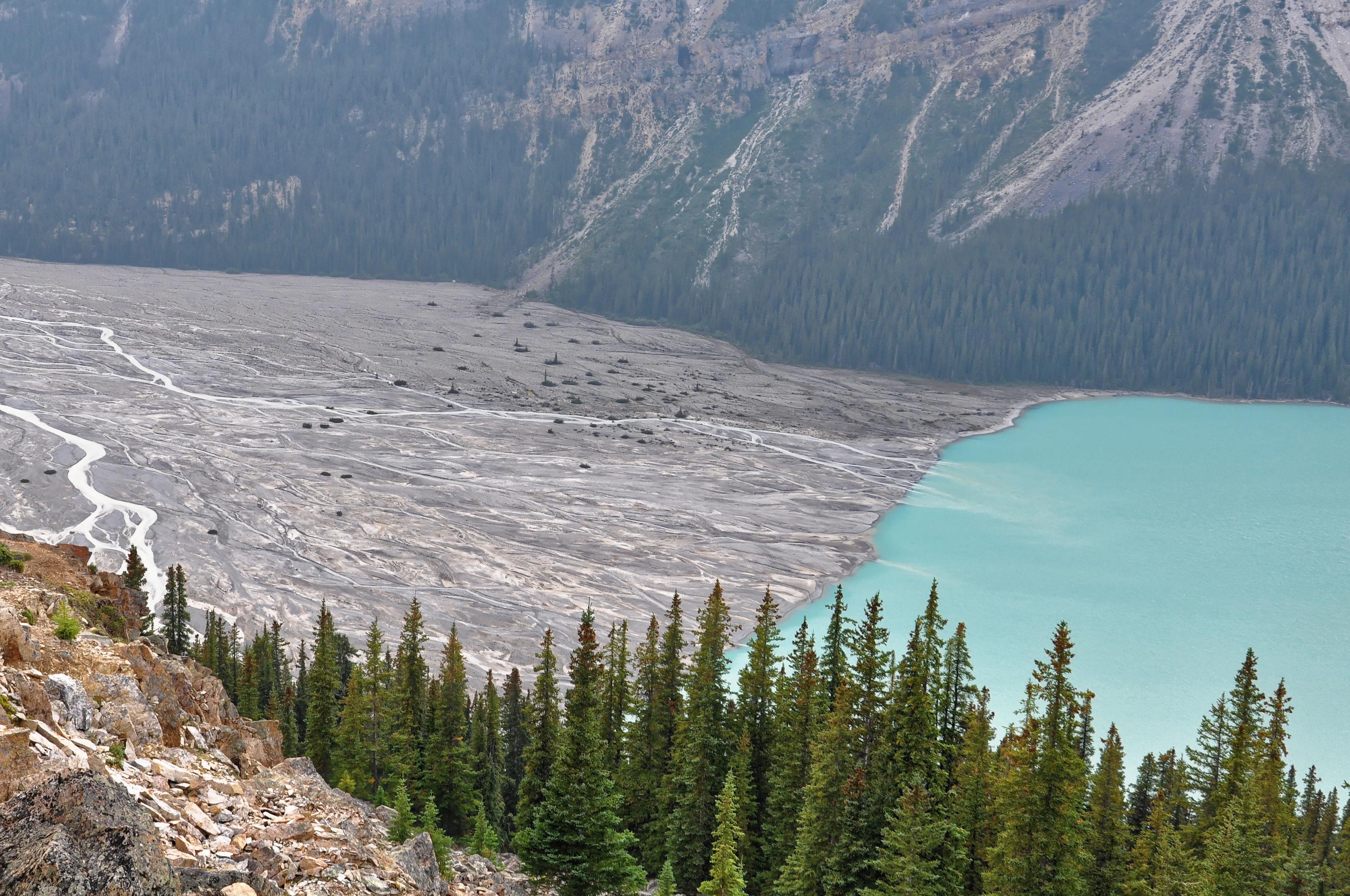 Le glacier Peyto dans les Rocheuses au Canada