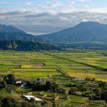 13 choses à faire ou à voir à Kumamoto au Japon