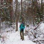 Voyage en Sibérie: visite de Krasnoïarsk et randonnée à Stolby